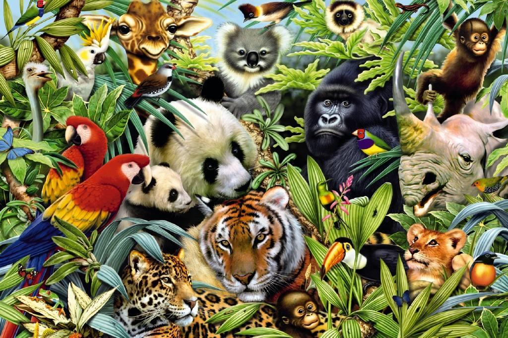 Los animales de la selva  Recurso educativo 104953 - Tiching