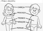 Partes do corpo humano | Recurso educativo 613214