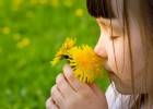 Girl smelling a flower | Recurso educativo 769340