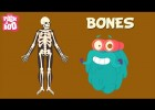 Video about the skeletal system | Recurso educativo 769347
